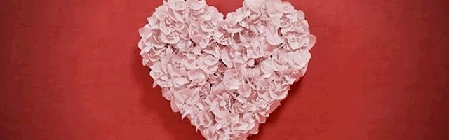 main_ heart